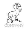moder goat logo vector image vector image