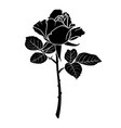 silhouette of a rose flower vector image vector image