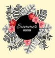 summer background with tropical leaves and flowers vector image vector image