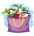 summer holiday object in the bag vector image vector image