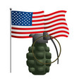 united state flag and grenade vector image