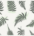 fern leaves background vector image vector image