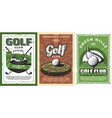 golf clubs balls and cart on cource green field vector image vector image