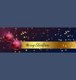 merry christmas beautiful banner with 3d xmas vector image vector image
