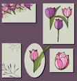 set cards with tulips and herbs on white floral vector image