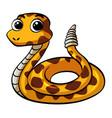 snake on white background vector image