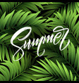 summer lettering on palm leaf background vector image
