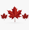 autumn brown maple leaf fall isolated on white vector image vector image