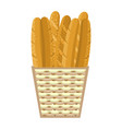 fresh baguettes in basket colorful vector image