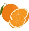 Fresh oranges fruits with green leaf whole and vector image vector image