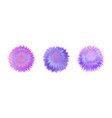 fur colorful pompoms fluffy ball with furry vector image