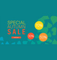 special autumn sale banner horizontal flat style vector image vector image
