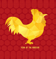 Chinese New Year 2017 Beautiful colorful and vector image vector image