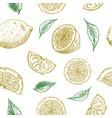 drawing lemons seamless background vector image