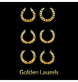 Golden laurels vector image