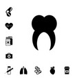 human root tooth molar vector image vector image