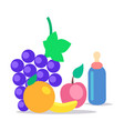 kids healthy ration flat concept vector image