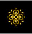ornamental flower icon logo template vector image