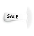 sales tag vector image vector image