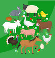 set of farm domestic animals round pattern vector image vector image