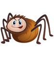 wild spider on white background vector image vector image