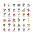 Fruit and vegetables line icons with flat vector image