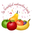 Fruit Watercolor Composition vector image vector image