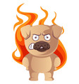 pug on fire on white background vector image vector image