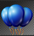 realistic blue balloons with ribbons isolated vector image vector image