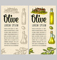 vertical template for menu poster label olive vector image