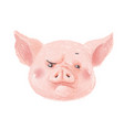 adorable pig character frowns cute little piglet vector image vector image