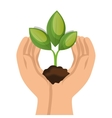 ecology plant symbol icon vector image