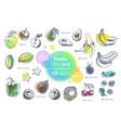 fruits hand drawn icons set fresh organic food vector image vector image