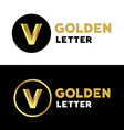 Letter V number 5 logo icon design template vector image vector image