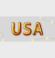 usa inscription gold letters on a gray vector image