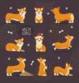 Adorable welsh corgi dogs with yellow fur set vector image