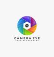 camera concept template vector image