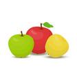 cartoon set of apples vegetarian fruits vector image