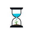 hourglass with sprout and water drop vector image vector image