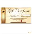 Luxury gift certificate template vector image vector image