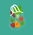 mesh bag with funny vegetables vector image