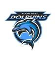 Dolphin logo emblem for a sport team vector image