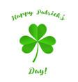 happy patricks day card vector image