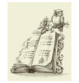 open book vintage stand and cute owl vector image
