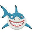 cartoon angry shark isolated on white background vector image vector image