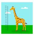 cartoon cute giraffe with ruler growth vector image