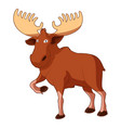cartoon smiling moose vector image vector image