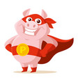 cute superhero pig isolated on vector image