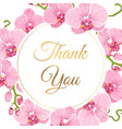 orchid phalaenopsis floral wreath thank you card vector image