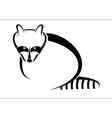 Raccoon symbol vector image vector image